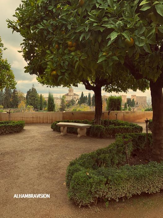 Vistas de la Alhambra desde los Jardines Nuevos del Generalife